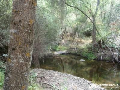 Cañones del Río Cega y  Santa Águeda  – Pedraza;excursiones sierra de madrid el paseo el escori
